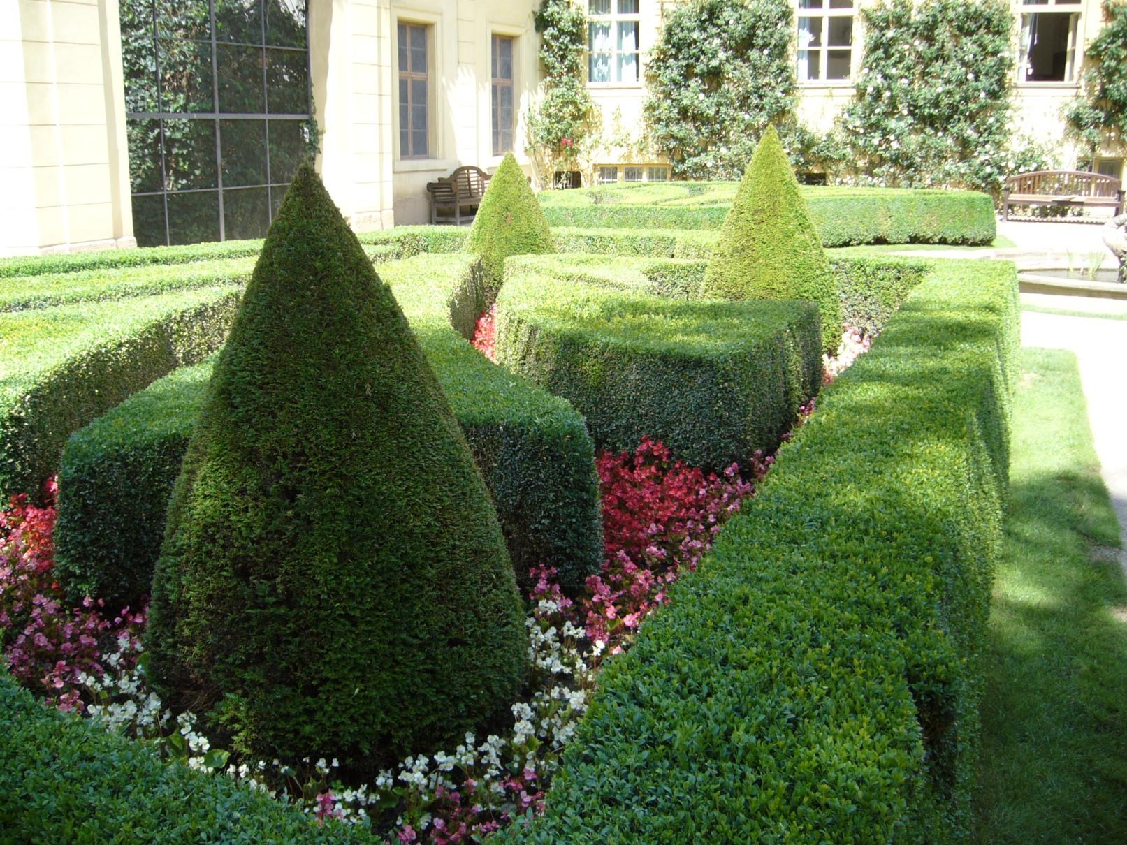 Vrtbovská zahrada - tvarované dřeviny