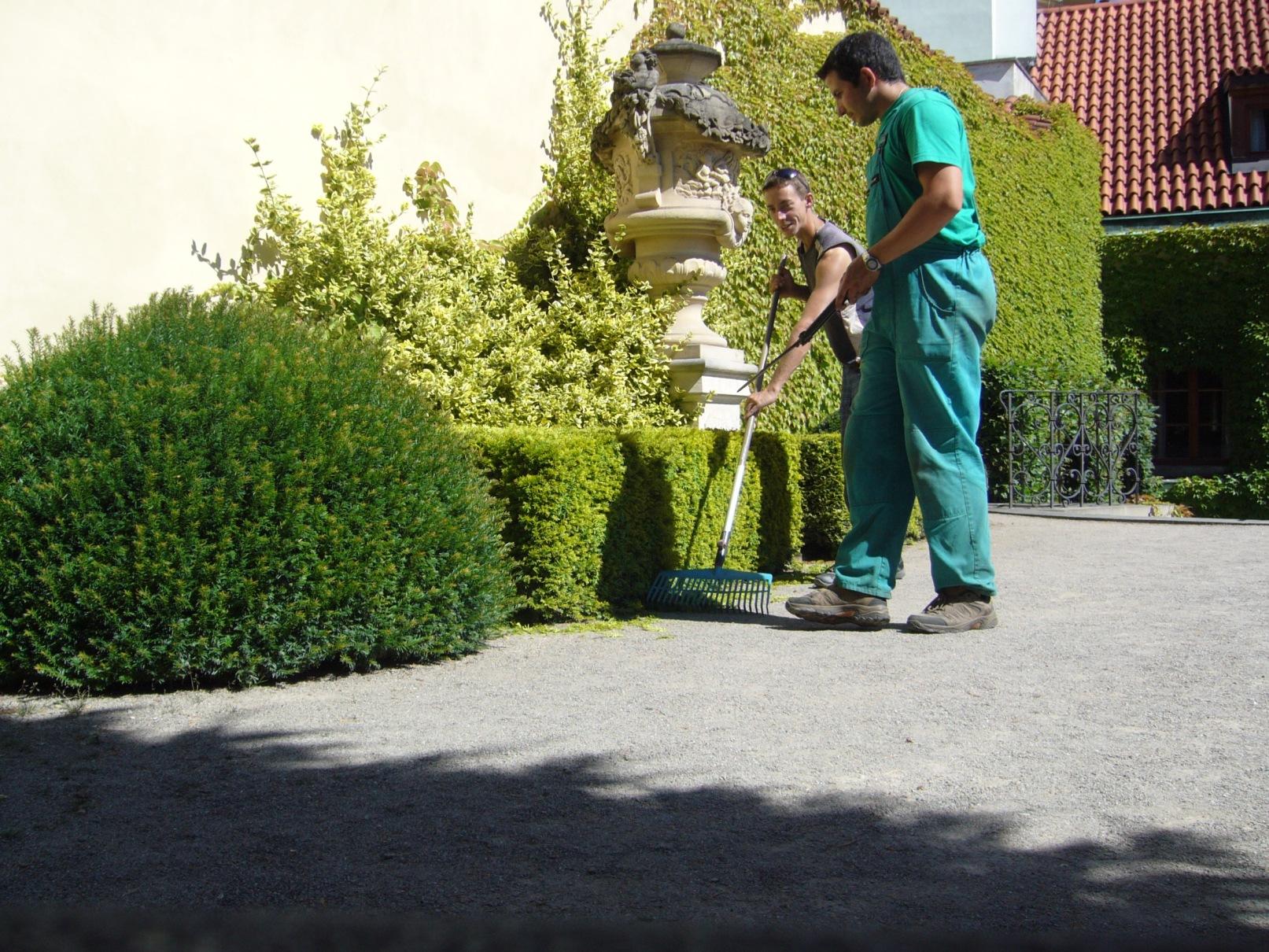 Vrtbovská zahrada - stříhání živých plotů