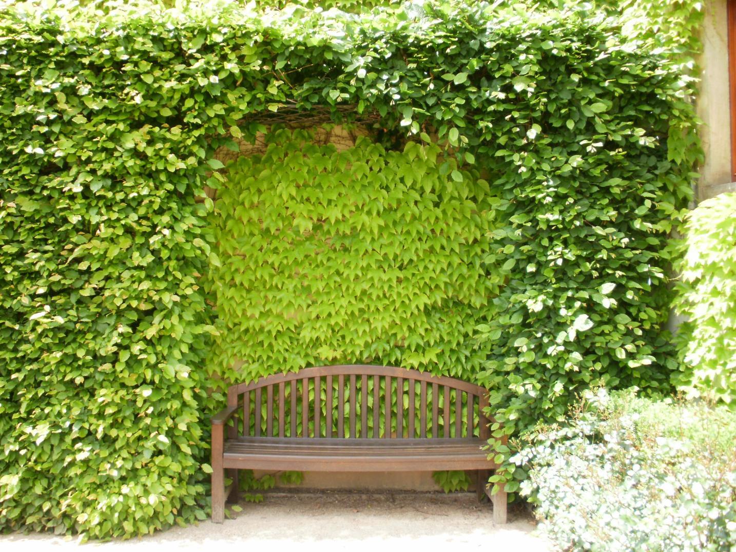 Vrtbovská zahrada - zelené zákoutí s lavičkou