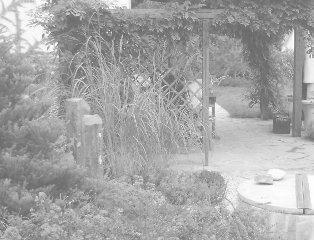 rodinná zahrada v Černošicích