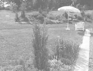 rodinná zahrada v Nové Vsi pod Pleší