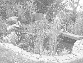 rodinná zahrada v Senohrabech